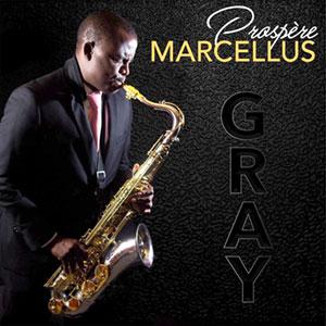 Prospere Marcellus - Gray by konpa.info 105627